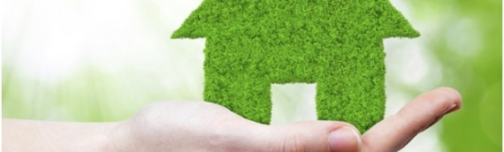Three Ways to Make Your Home Greener